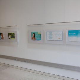 Installation view 'Havidol' posters.