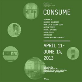 consume flyer